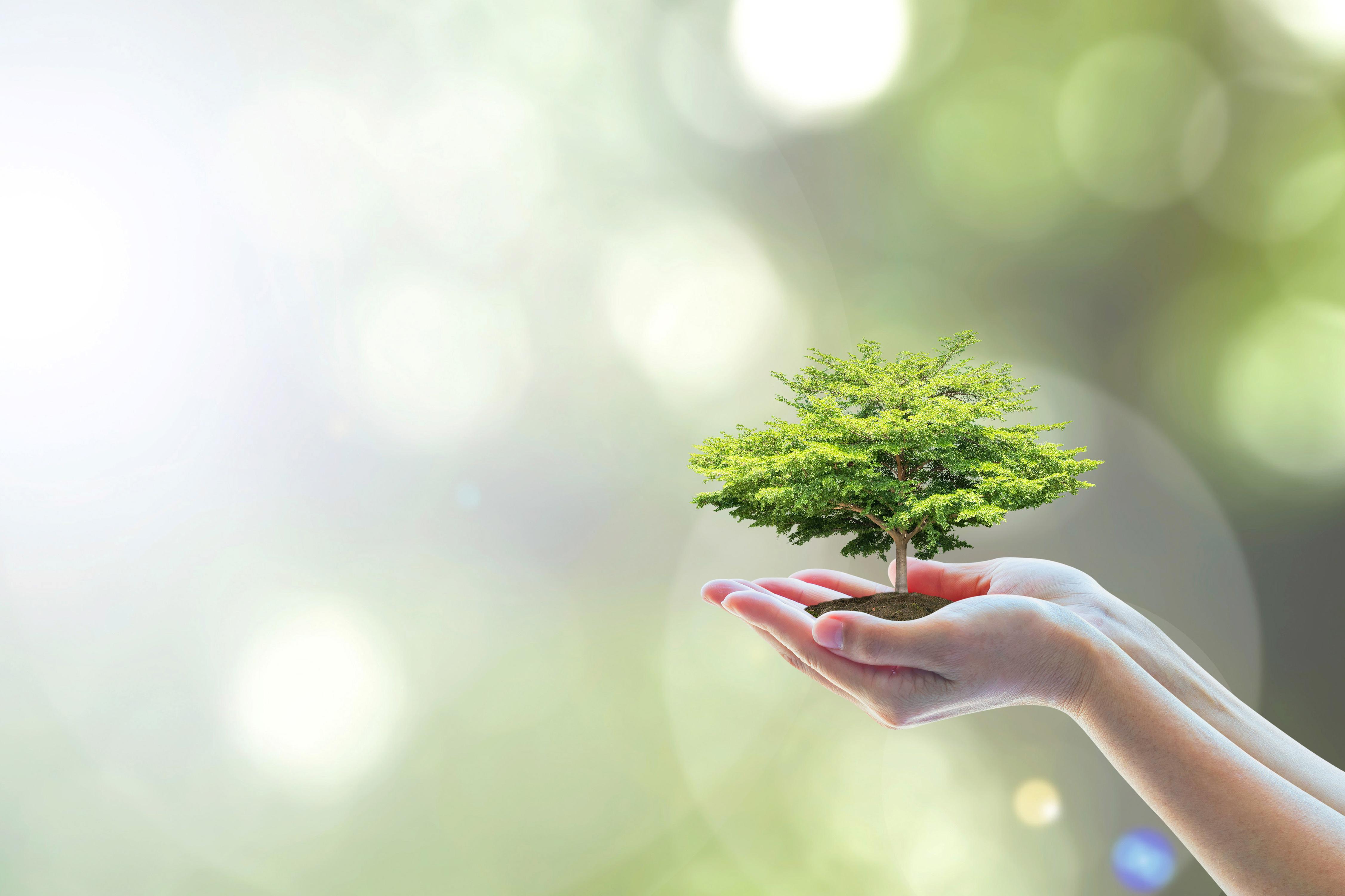 Exposition : « Agir pour préserver notre planète ! »