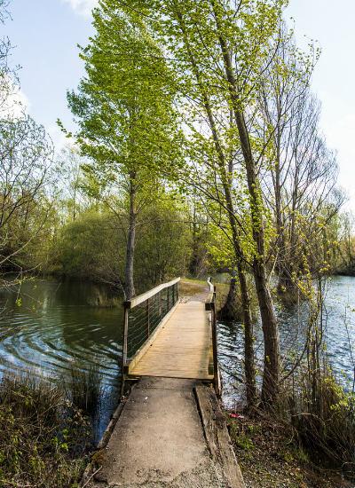 Promenade en réserve naturelle