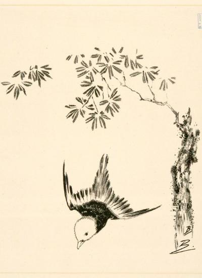 petit-oiseau-volant